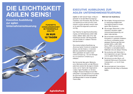 Flyer - Executive Education Agiles Management herunterladen