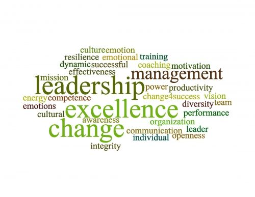 Leadership Excellence by CHANGE 4 SUCCESS